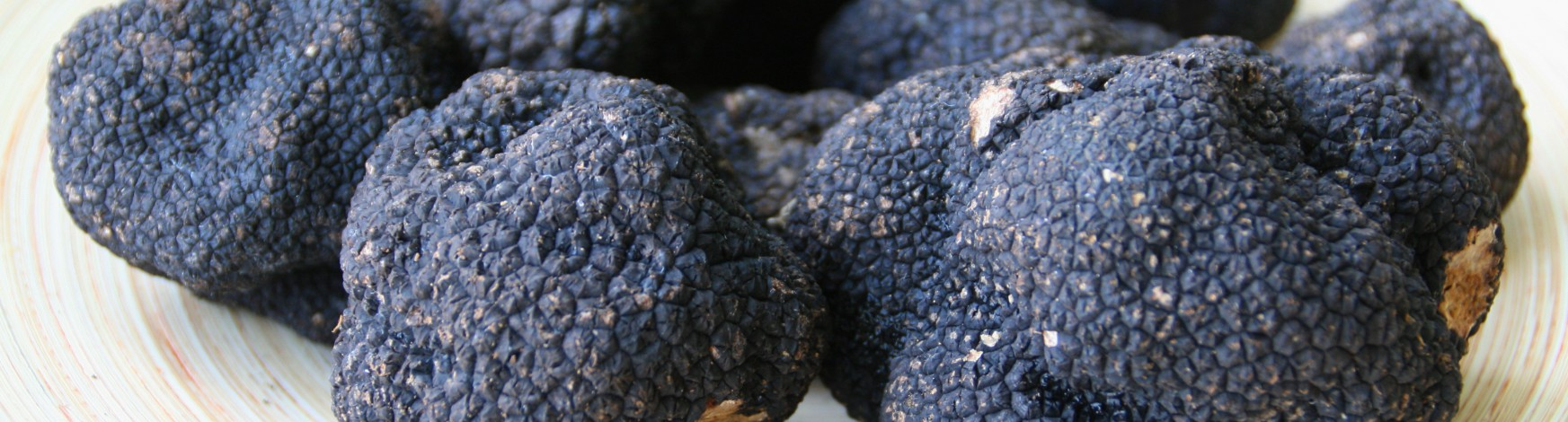 black-truffle.